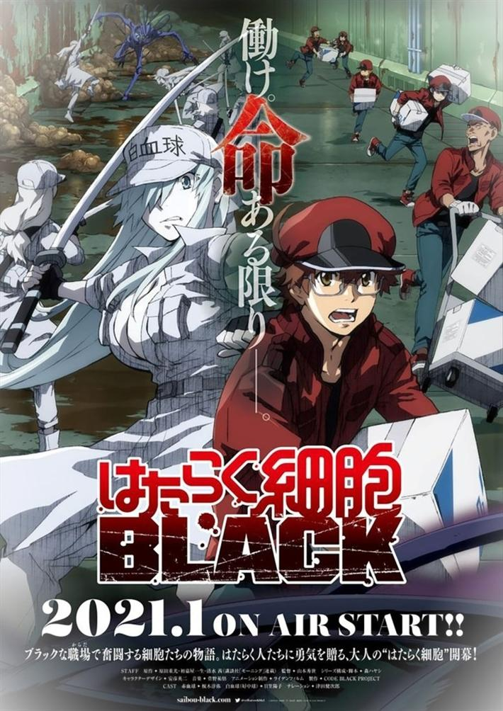 Cells At Work Black Anime TV Key VisualbIC42ypZb 5