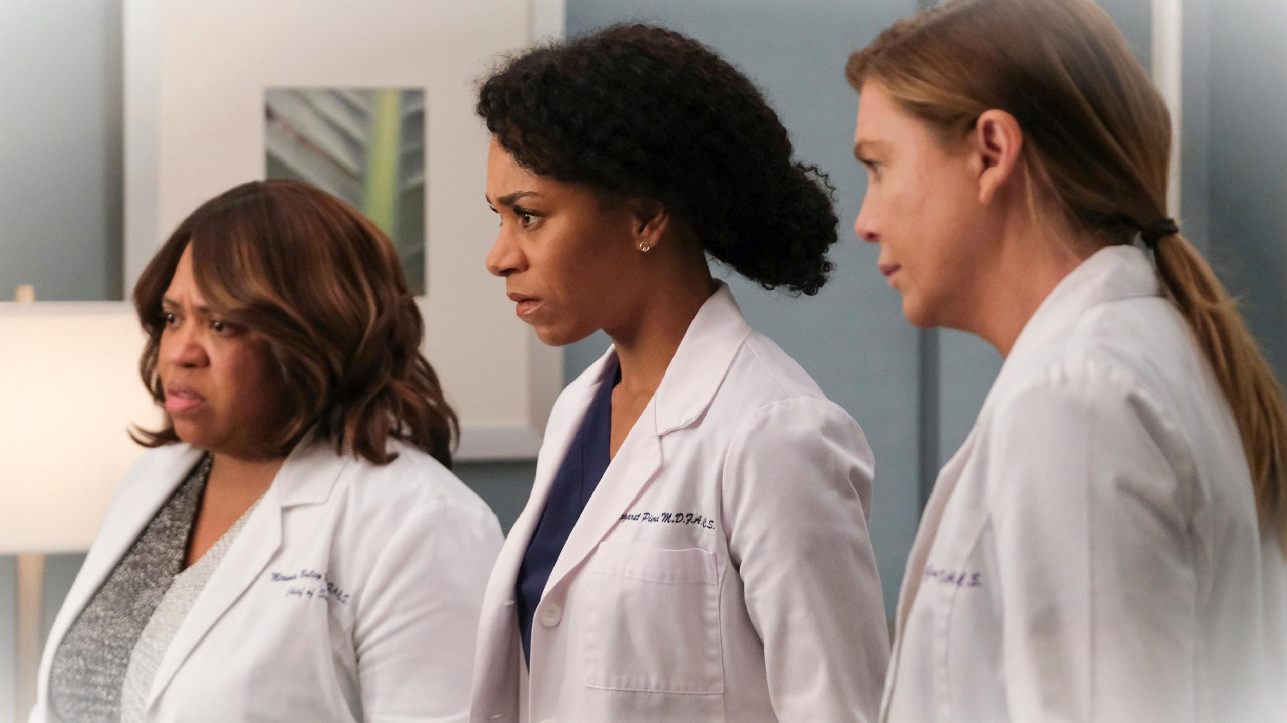 Greys Anatomy saison 17 2