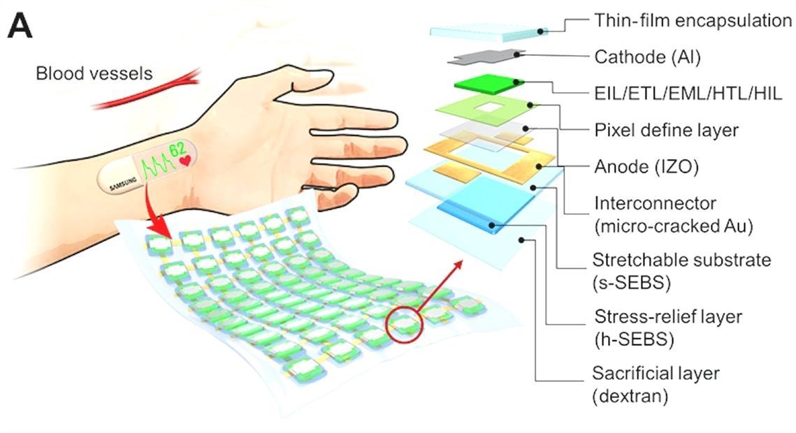 Samsung travaille sur un ecran OLED extensible dote de fonctions wsnw8Q8A8 2 4